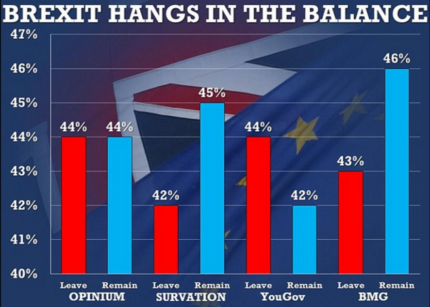 Chart of recent Brexit opinion polls via the Daily Mail
